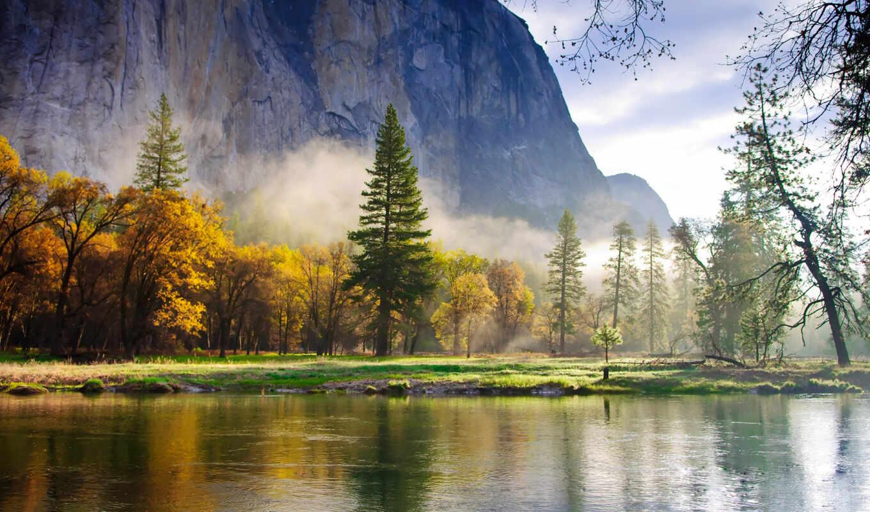 природа, горы, лес, туман, озеро, утро,