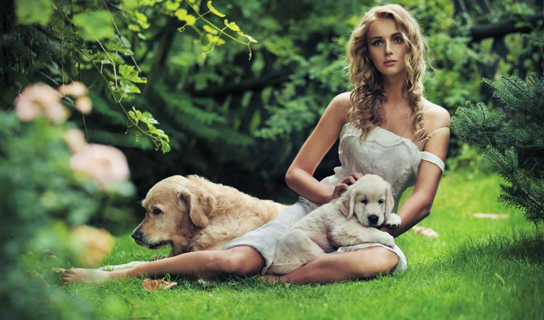собакой, devushka, devushki, красивая, траве,
