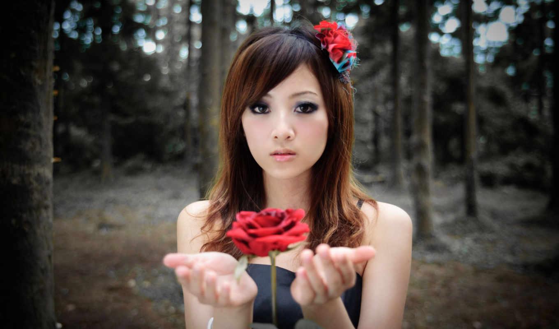 девушки, азиатка, красивые, девушка, роза, красивых, самую, красивая,