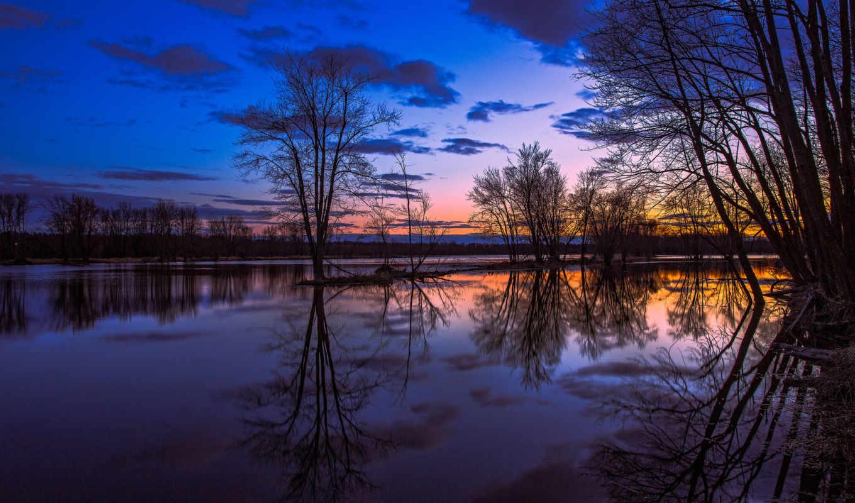 онтарио, картинка, канада, озеро, отражение, деревья, вечер,