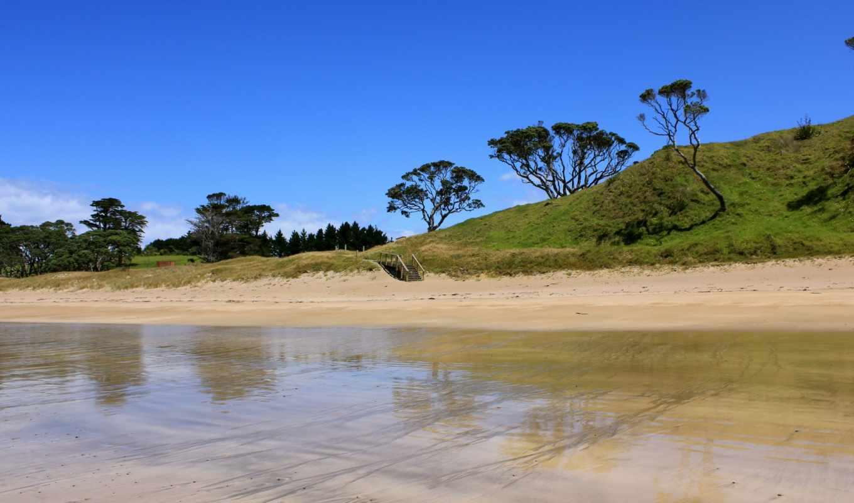 река, берег, мель, вода, озеро, солнечно, деревья, ступеньки,