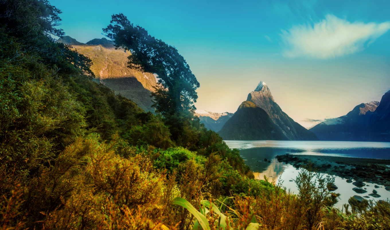 новая зеландия, горы, пейзаж, milford, кусты, природа, картинка,
