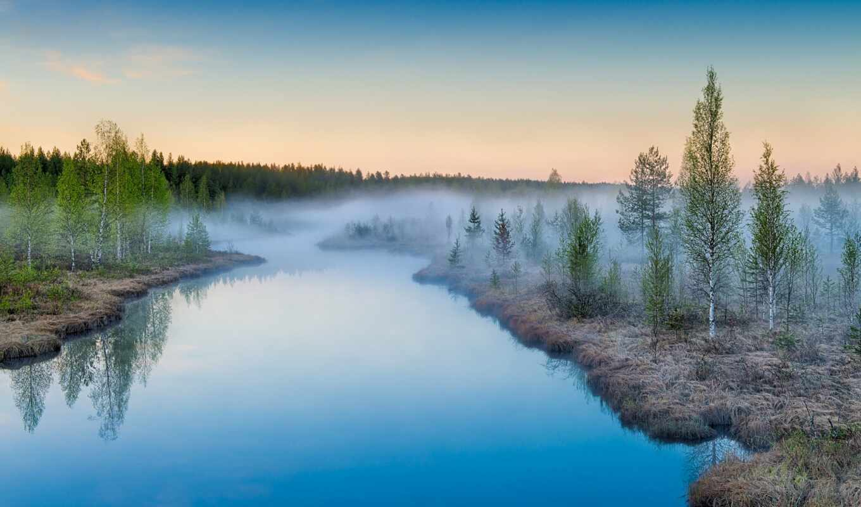 portada, природа, отражение, water, frase, озёрный, edge, озеро, vodyt