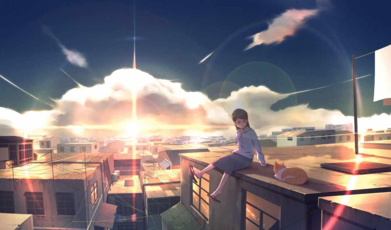 anim, anime, кот, арта, крыша, mang, девушка, scenery, город, house, закат