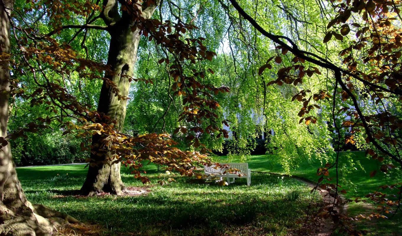 гамбург, парк, штадт, природа, парки, лавка,