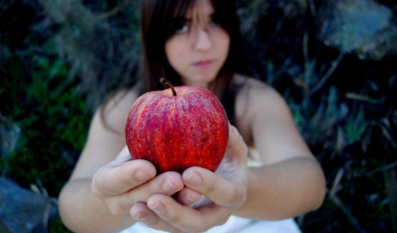 apple, flickr, users, mind, hive, fruta,