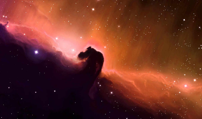 космос, звезды, туманность, голова, конская, арт, stars, cosmos, картинка,