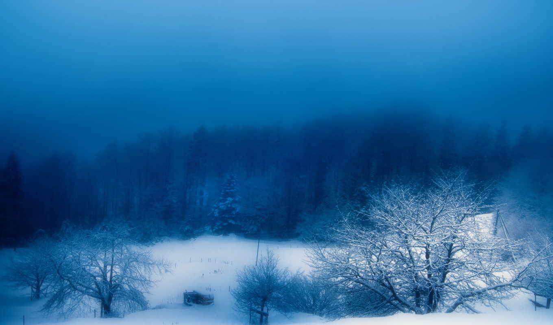 зима, снег, туман, вечер, природа,