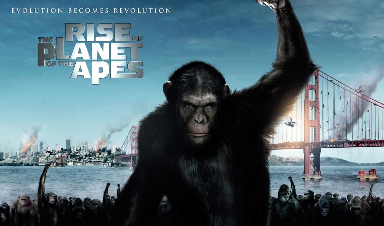 обезьян, uprising, планеты, взлёт, planet, apes,