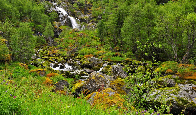 природа, водопады, park, national, zima,