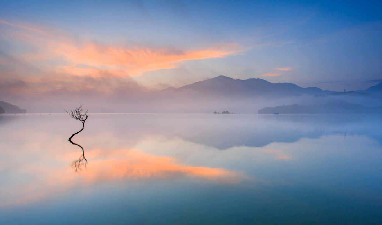 озеро, дерево, пар, горы, утро, туман, картинка, дымка,