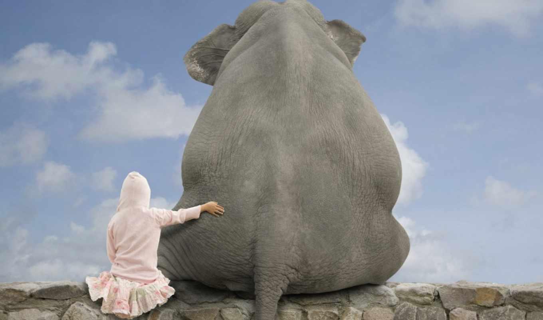слон, друзья, девочка, небо, облака, стена, камни
