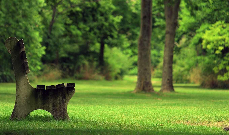 park, bench, summer, скамейка, камень, скамейка,