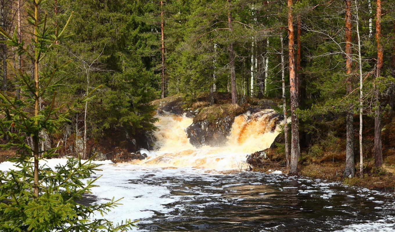 природа, леса, деревья, водопады, реки,