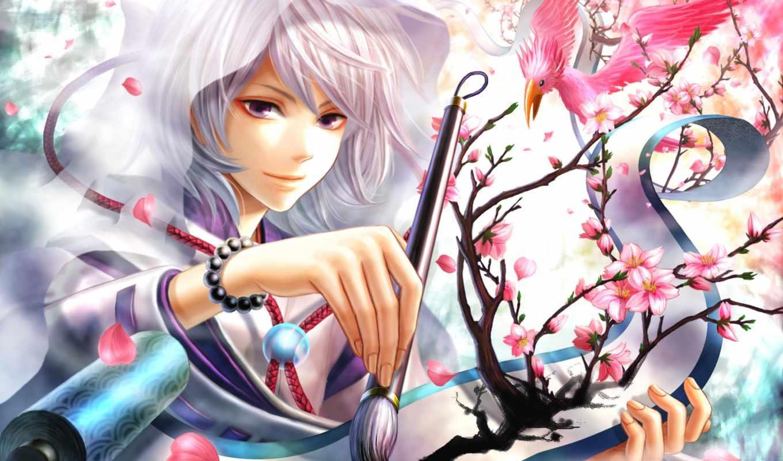anime, парень, белые, волосы, категории, свет,