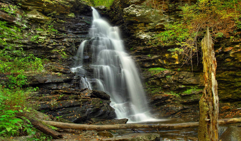 широкоформатные, лес, фотографий, заставки, нашем, stock, водопад, package, камни, dingmans,