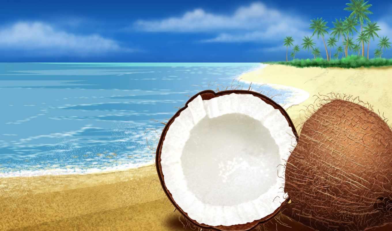 summer, кокосовый, море, tropics, лес, природа,
