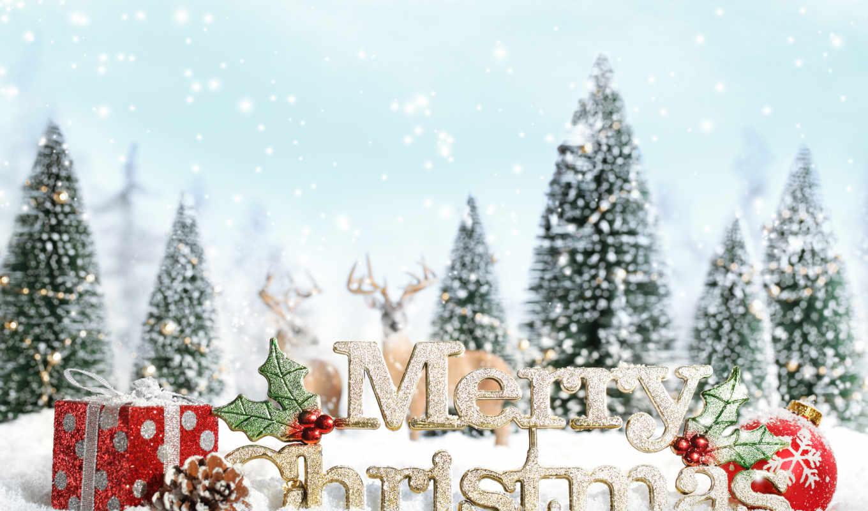 год, new, дерево, праздник, картинка, снег, christmas, дек,