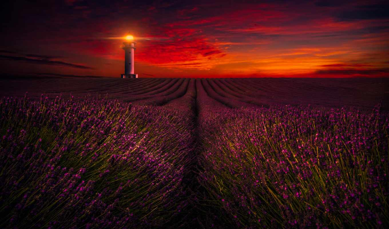 lavender, закат, lighthouse, поле, ферма, природа,