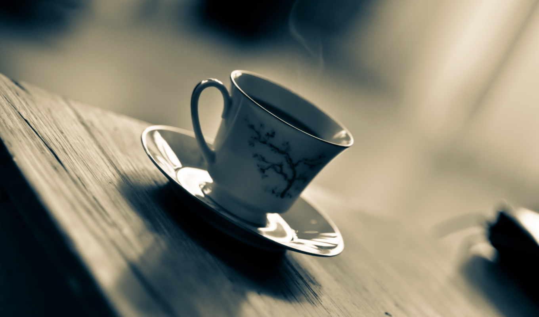 макро, чашка, картинка, картинку,
