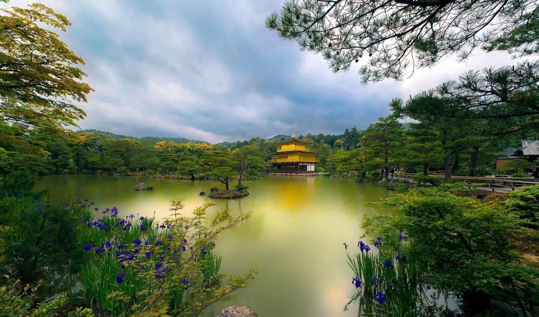 kyoto, japan, golden, pavilion, temple, картинка,