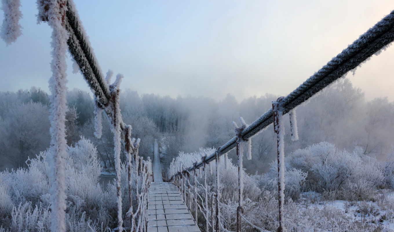зима, мост, иней, снег, подвесной, лес, природа,