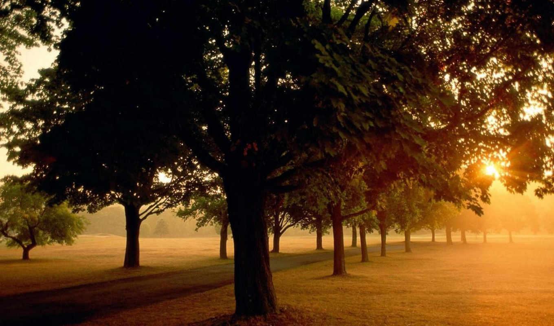 sunrise, park, солнца, id, природой, фотография, atardecer, её, nature, sunset, картинку, time, take, природы, presentation, фотографии, part,