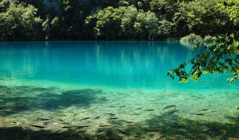 water, озеро, природа, рыбы, голубая,