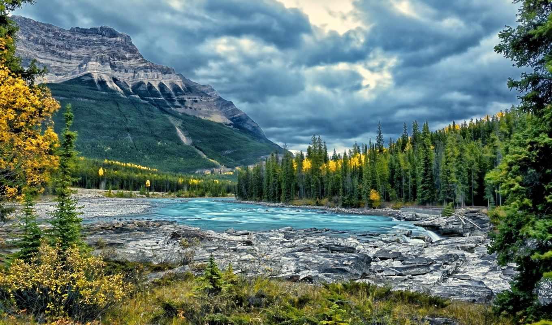 горы, река, лес, канада, альберта, landscape, park, national,