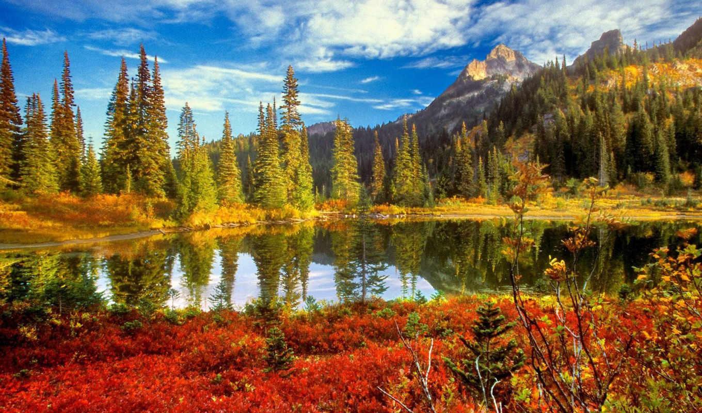,озеро, горы, лес, природа, небо,