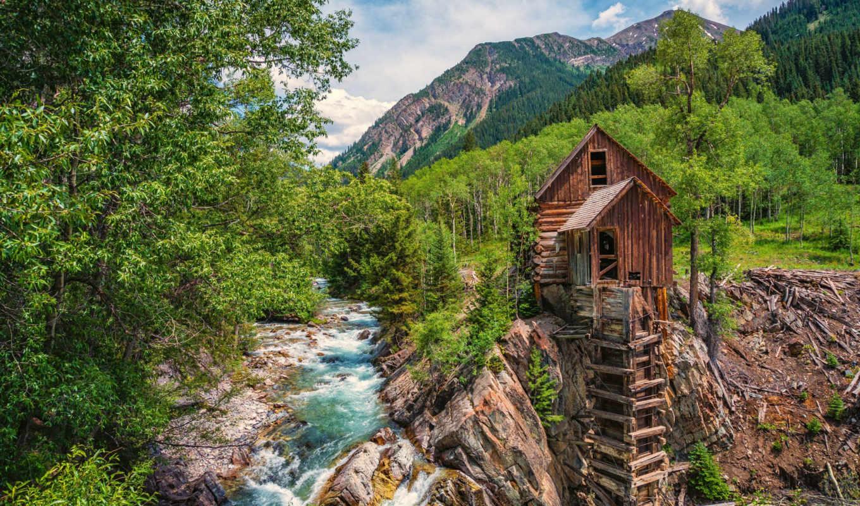 crystal, река, mill, лес, лис,
