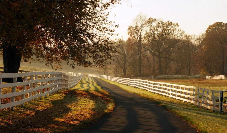 природы, природа, деревня, дорога, high, free, фона,