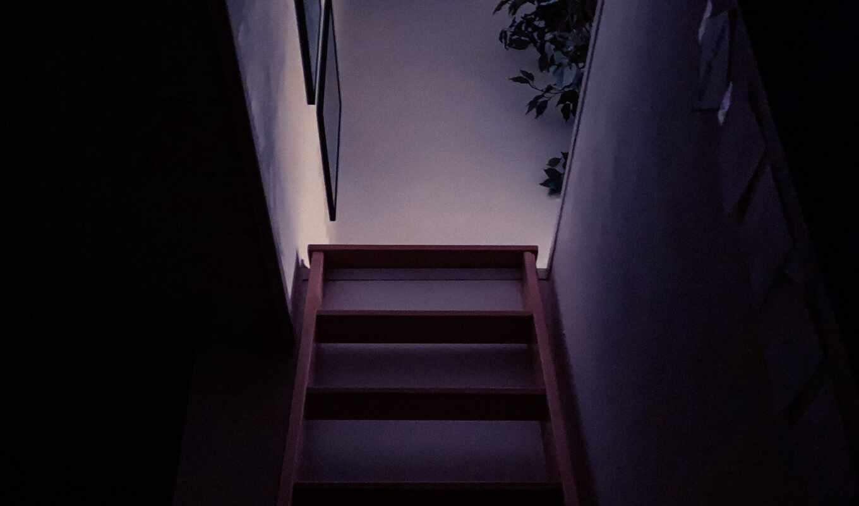 stair, dark, комната