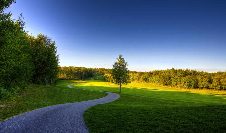 природа, дорога, деревья, небо, трава, лето, картинка, зелень,