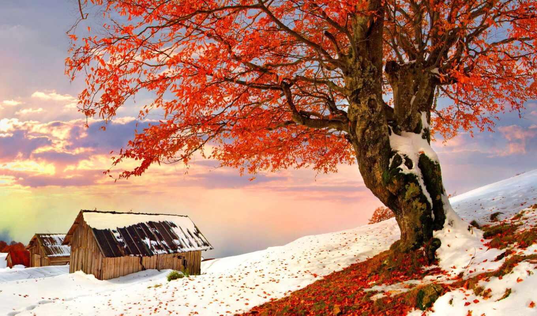 landscape, winter, снег, природа, новая, высокого, коллекция, качества, пейзажей, пейзажи -, зимних,