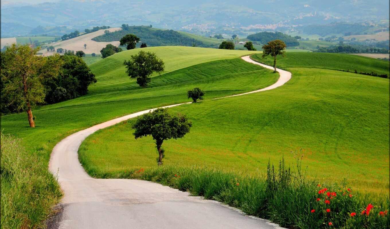 трава, hill, природа, зелёный