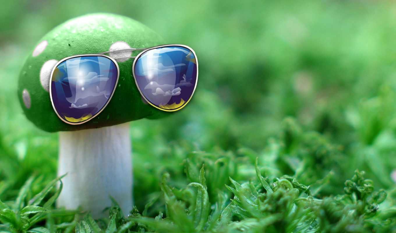 гриб, трава, очки, графика