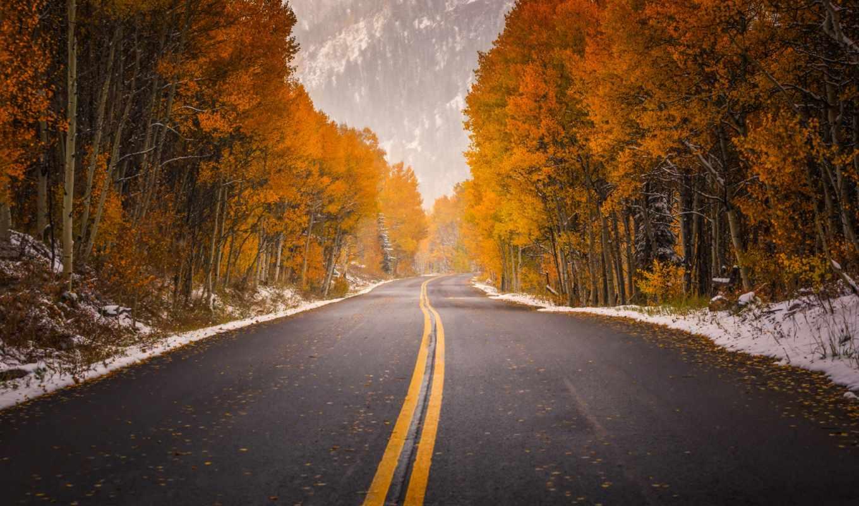 осень, зарегистрируйте, войдите, дорога, россия, дотянуться,