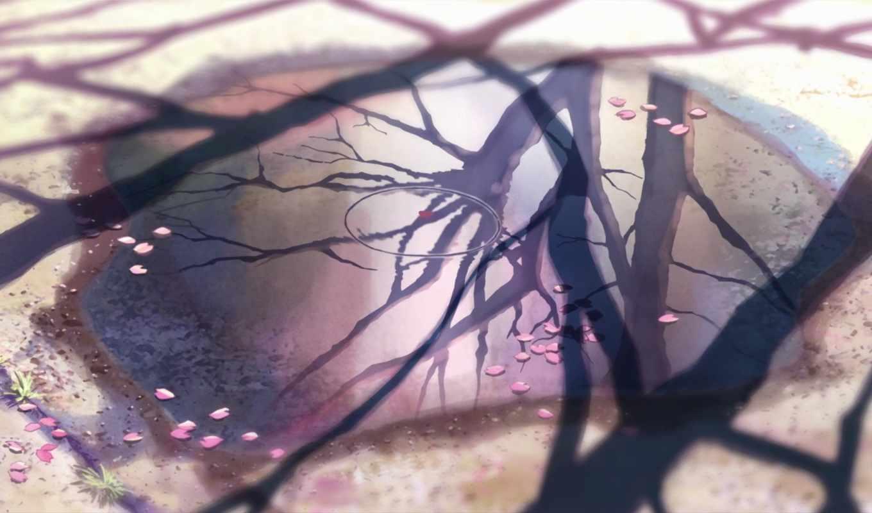 сантиметров, секунду, синкай, макото, сакуры, листья, отражение, картинка, аниме, bscap, но,