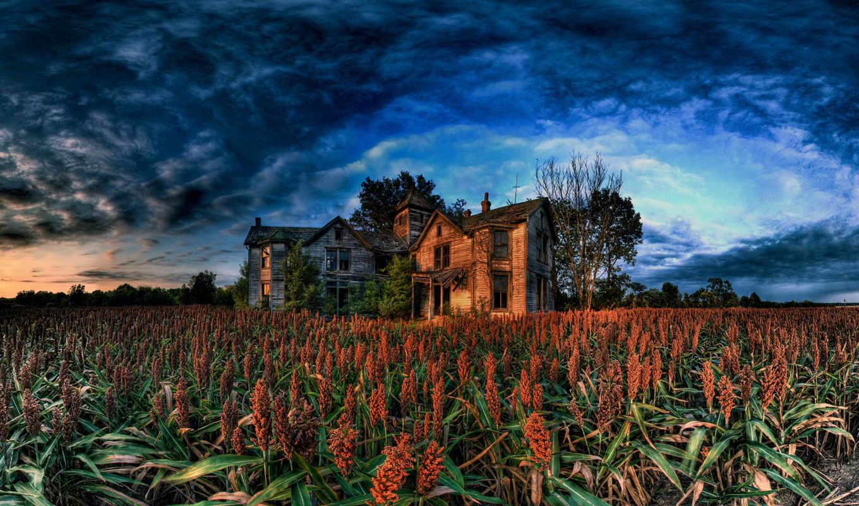 house, farm, wallpaper, شما, кукурузы, abandoned, широкоформатные, деревянная, поле, ферма,