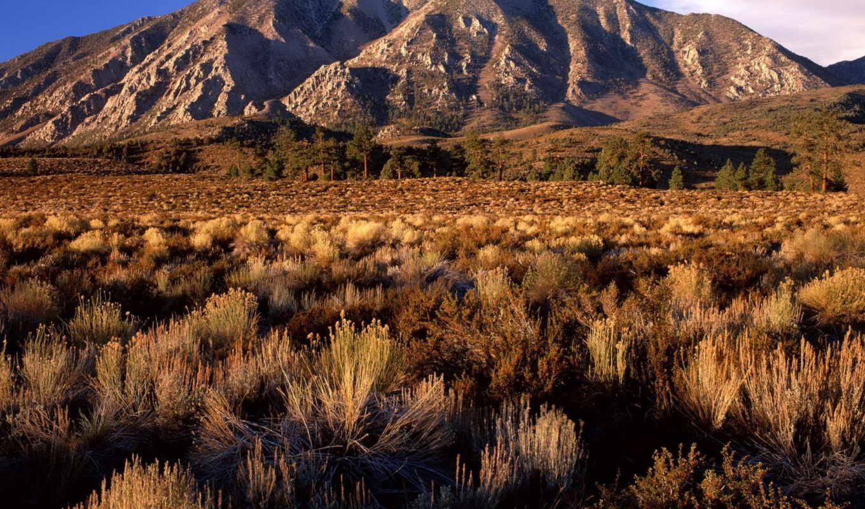 california, обоев, amazing, подборка, красивых, pi