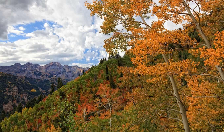 природа, деревья, осень, горы,