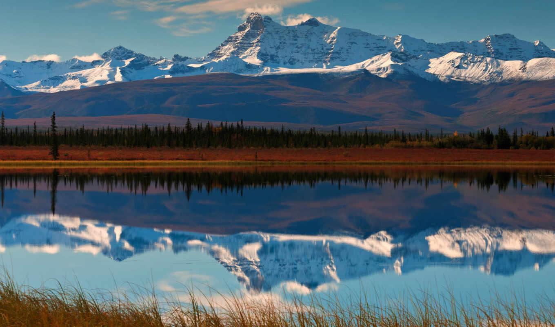 горы, лес, долина, река, отражение, цветы,