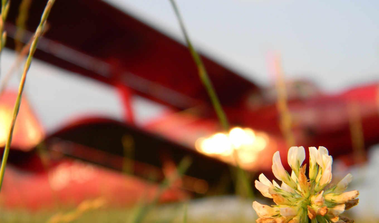 цветок, авиация, креатив, самолёт, картинка, desktop, iphone, skies, красный, preview, flight, код, collection, computer, part,