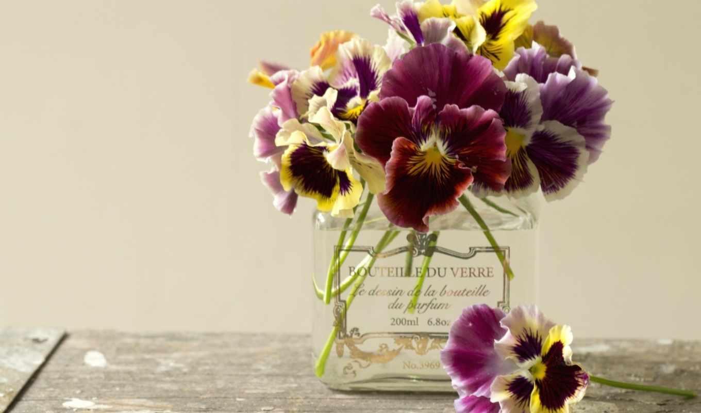 глазки, анютины, цветы, букет, ваза,