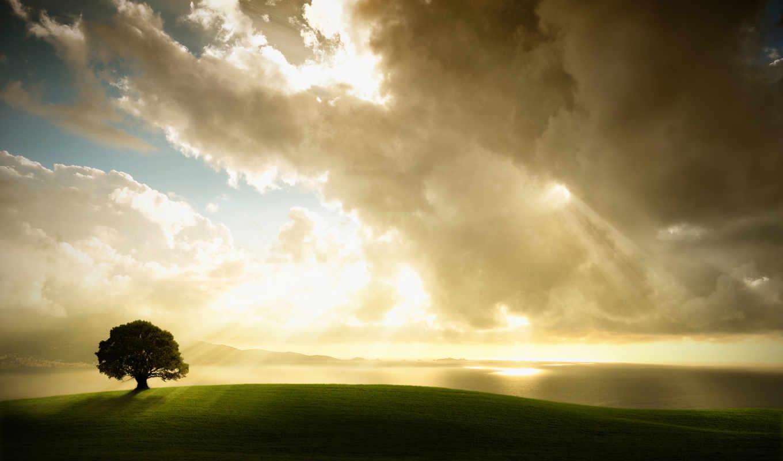 , enlightenment, nature, similar,