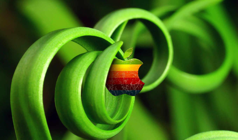 apple, fresh, зеленые, green, spiral, verde, grass, ростки,
