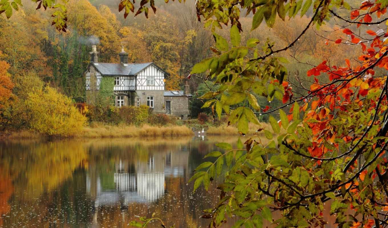 download, ветки, autumn, lake, день, house, branches, forest, this, изображения,