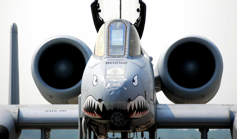 самолёт, полет, акула, самолети, thunderbolt,