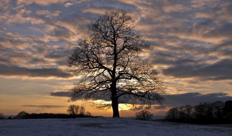 облака, небо, снег, winter, вечер, contact, войдите, зарегистрируйтесь, природы,